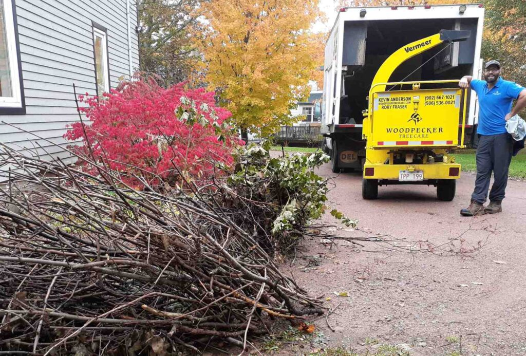 A woodpecker Tree Care employee leaning on our Vermeer brush chipper while contemplating the job before him.