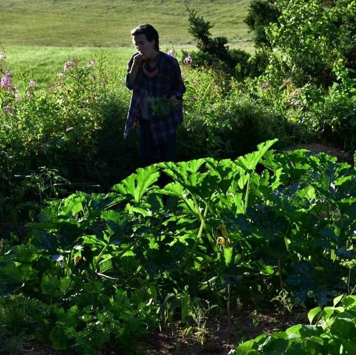 Meg eats a cherry tomato in the distance among zucchini plants.
