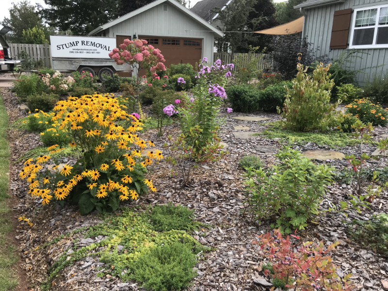 A garden with flowers, mulch, and assorted plants.