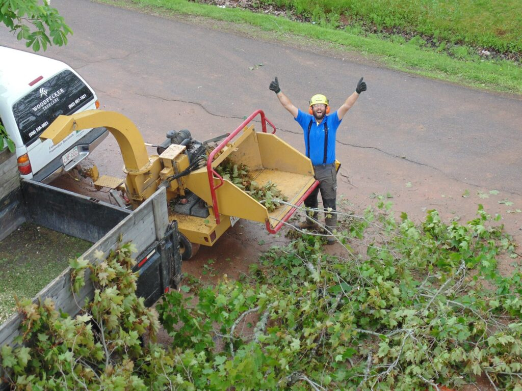 Rory raises his arms and smiles next to a woodchipper full of brush and branches.