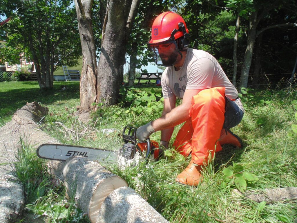A person kneels and takes a chainsaw to a fallen tree.